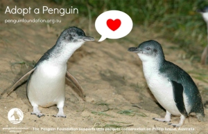 Little Penguins 2